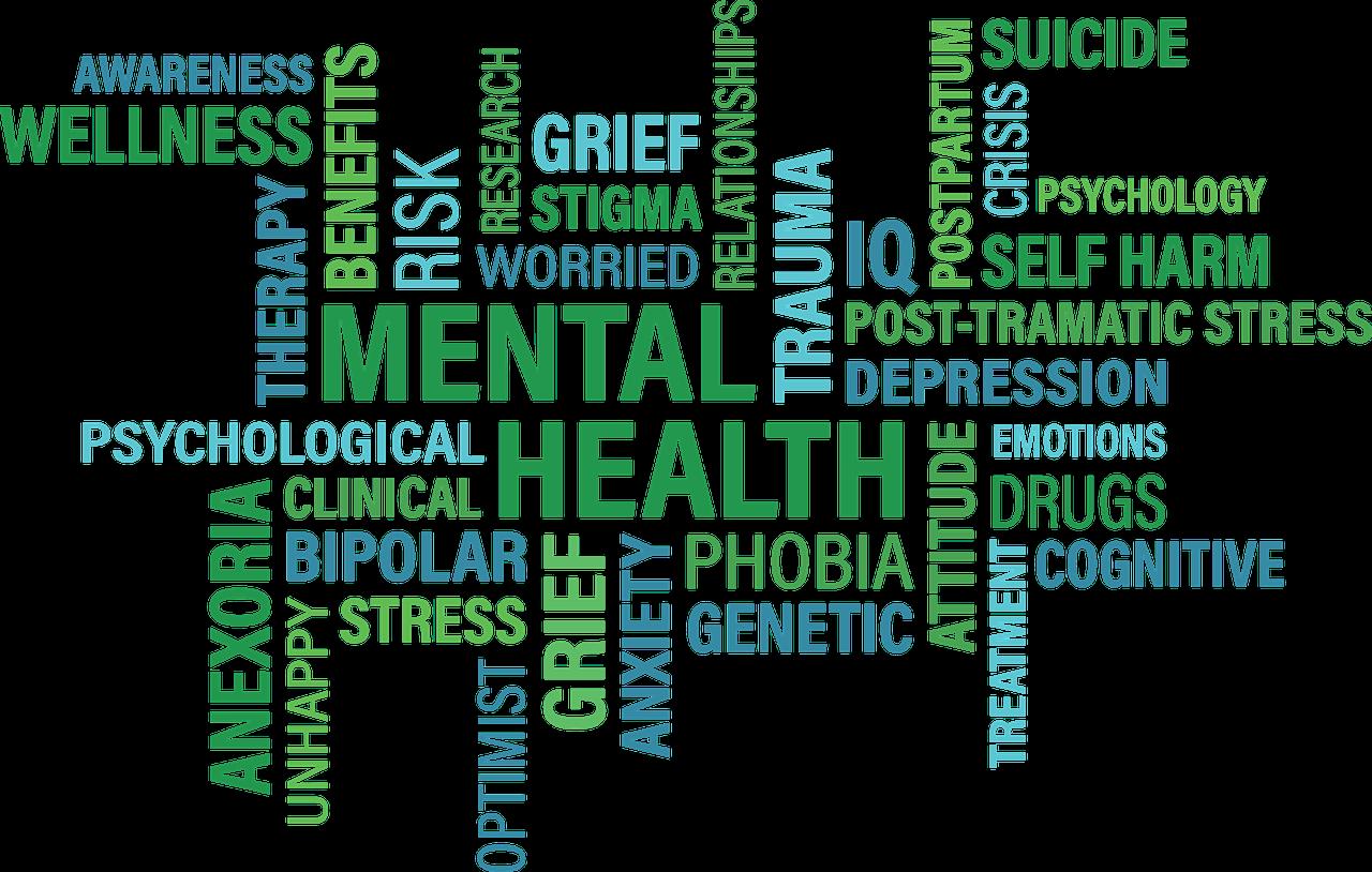 Atelier mentalisme, maladies mentales et psychiques